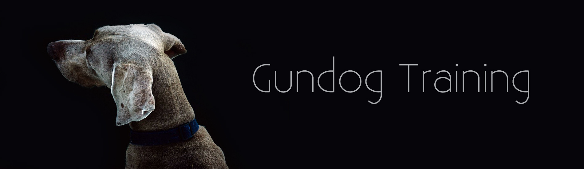Gundog training slider