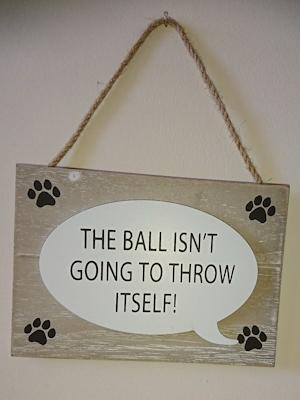'The ball isn't going to throw itself!' Sign