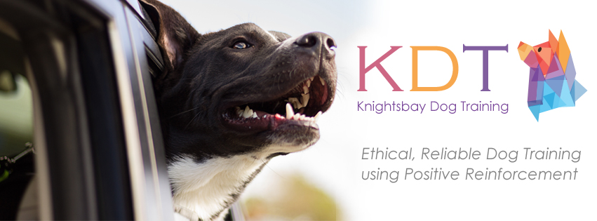 The Knightsbay Dog Training Facebook Cover Image