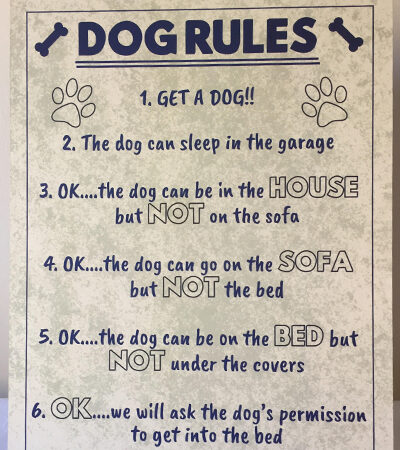 'Dog Rules' Sign